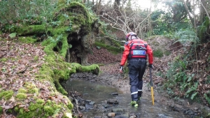 Dartmoor Rescue searching near Exeter